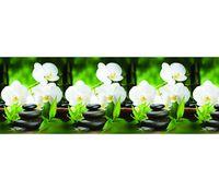 Кухонный фартук АБС Орхидея белая