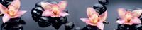Фартук кухонный SP 110 Цветы